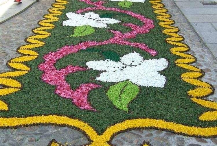 Unos claveles se utilizar n para alfombrar el Mas alfombrar